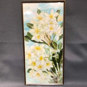 1920s Botanical Portrait Acacia Pealbata Mimosa