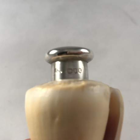 Sampson Mordan Real Shell Silver Topped Scent Bottle London 1885 image-6