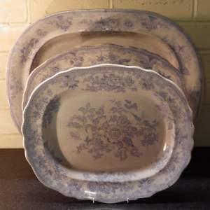 Victorian Antique Graduated Set of Three Asiatic Pheasant Meat Plates