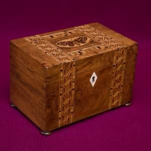Tantalus Barrels & Boxes