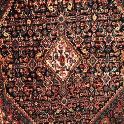 Old Hand Knotted Persian Rug  Senneh image-3