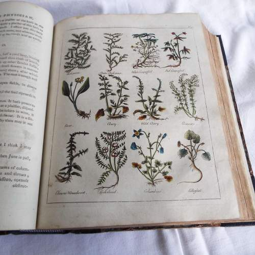 Culpepers English Physician and Complete Herbal 1790s Edition image-2