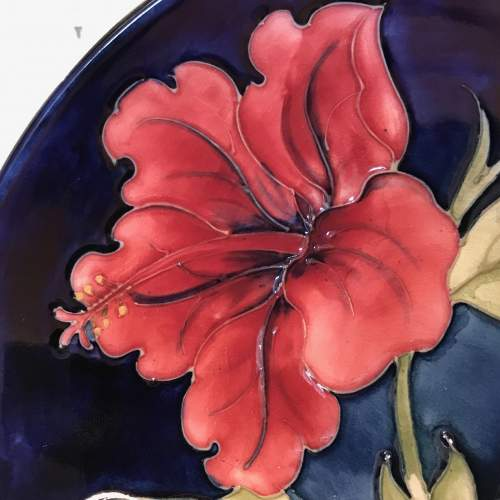 Moorcroft Pottery Hibiscus Dish image-2