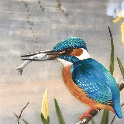 20th Century Watercolour of a Kingfisher image-2