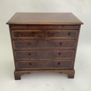 19th Century Apprentice Burr Walnut Chest of Drawers