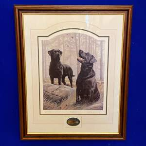 Limited Edition Signed Nigel Hemmings Black Labrador Print