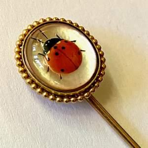 Antique 19th Century 18ct Gold Ladybird Pin