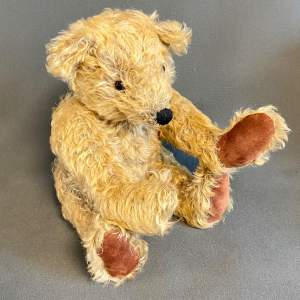Early 20th Century Jointed Mohair Teddy Bear
