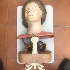 Atomic Anne First Aid CPR Manikin