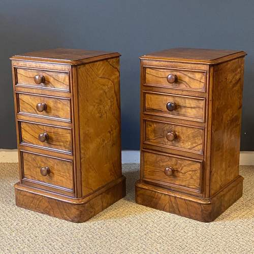 Pair of Victorian Burr Walnut Bedside Cabinets image-2