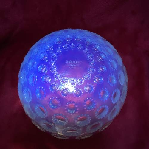 Rene Lalique Asters pattern Opalescent Glass Bowl from 1935 image-4
