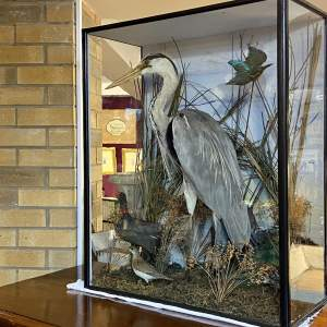 Late 19th Century Cased Taxidermy Group of a Stork and other Birds