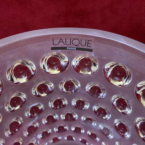 Lalique Mossi Glass Vase with Original Label and Box image-2