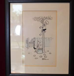 Original Signed Cartoon by Wally Robertson of Boys Apple Scrumping