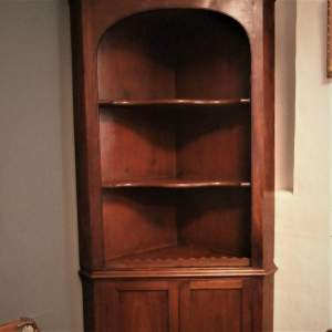 19th Century Mahogany Floor Standing Corner Cupboard
