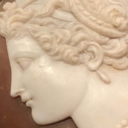 19th Century Classical Style Shell Cameo Brooch image-5