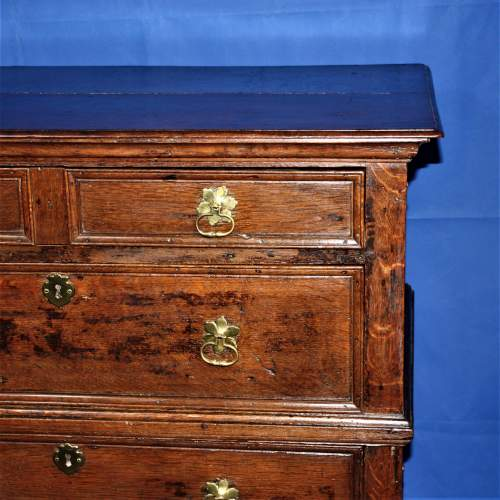 A Good Early Oak Splitter Chest of Drawers image-4