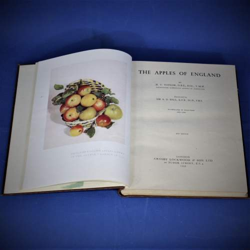 The Apples of England Mid 20th Century Book image-2
