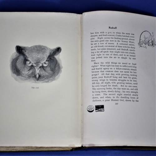 Book of Wild Animals I Have Known image-6