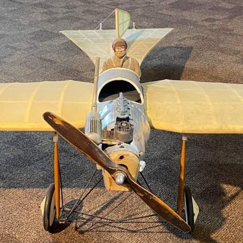 Large Model Etrich Taube Plane image-3