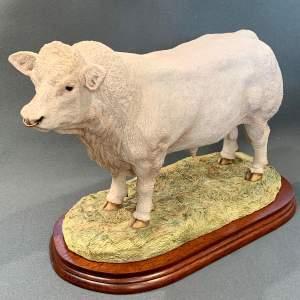 Border Fine Arts Classic Charolais Bull