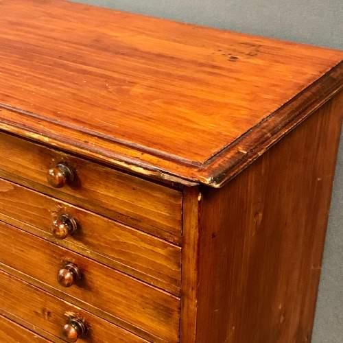 19th Century Ten Drawer Polished Pine Specimen Chest image-3