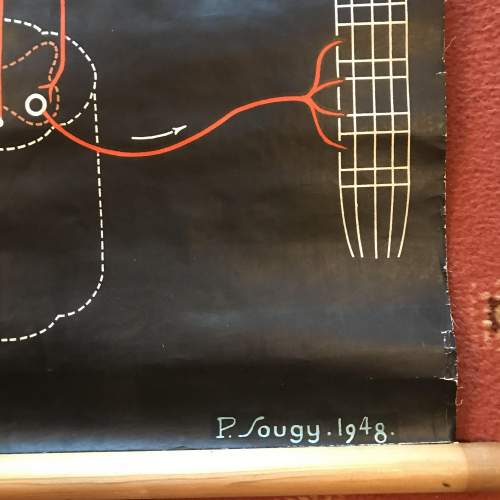 A Large Engineering Chart 1948 Signed P Sougy image-2