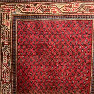 Superb Quality Hand Knotted Persian Rug Mir-Seraban Botech Design
