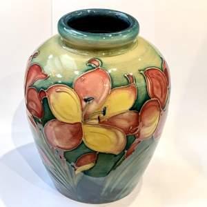 Walter Moorcroft African Lily Vase