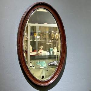 Large Oval Faux Tortoiseshell Wall Mirror