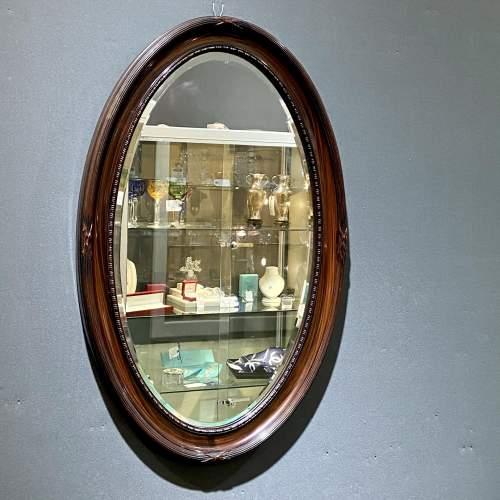 Oval Faux Tortoiseshell Wall Mirror image-1