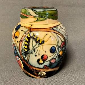 Moorcroft Hartgring Ginger Jar