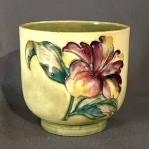 Walter Moorcroft Hibiscus Cache Pot