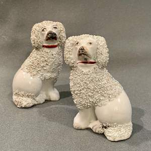 Pair of Small Antique Staffordshire Poodle Dogs