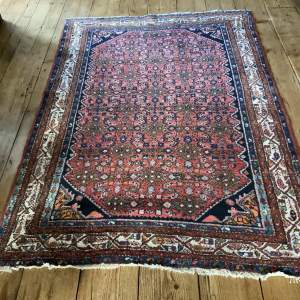 Wonderful Old Hand Knotted Persian Rug Hamadan In Herati Design