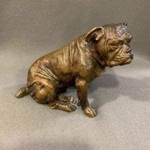 Austrian Cold Painted Bronze Bulldog