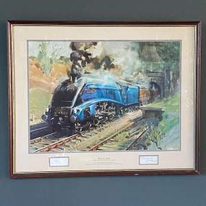 Mallard Signed Limited Edition Print by Terence Cuneo