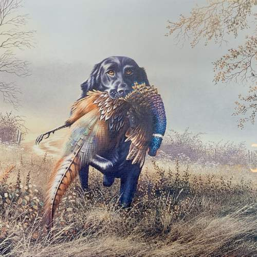 Limited Edition David Waller Print of a Labrador and Pheasant image-2