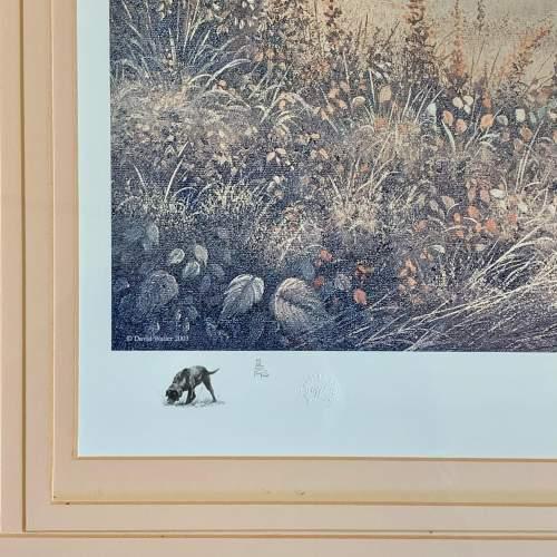 Limited Edition David Waller Print of a Labrador and Pheasant image-3
