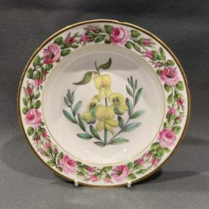 Early 19th Century Coalport Named Botanical Plate - Yellow Flower