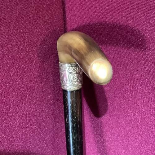 Silver Top Walking Stick image-1