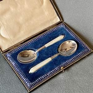 Cased Set of Edwardian Silver Jam Spoons