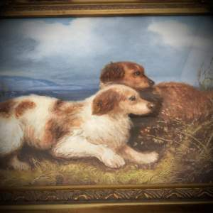 Oil on Board Painting of Spaniels Flushing Game by Henry Percy
