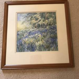 Watercolour  Bluebells at Ripley Woods  by Susan Dalby  2002