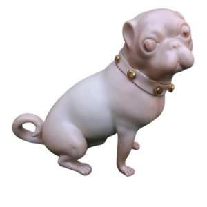 Antique Royal Worcester Blush Pug Dated 1900